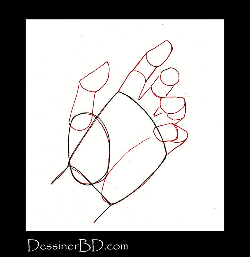 dessiner une main étape 2 les phalanges