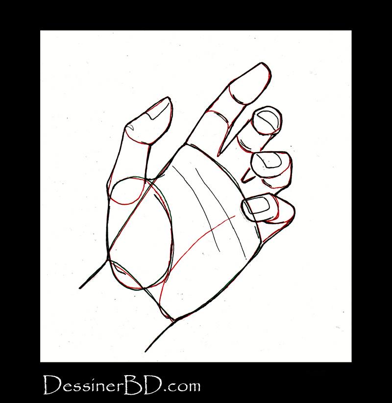 dessiner une main étape 3 les détails