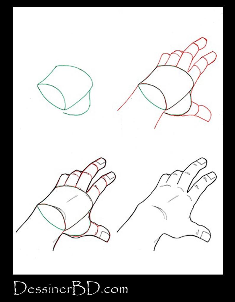 Comment dessiner une main de dessus