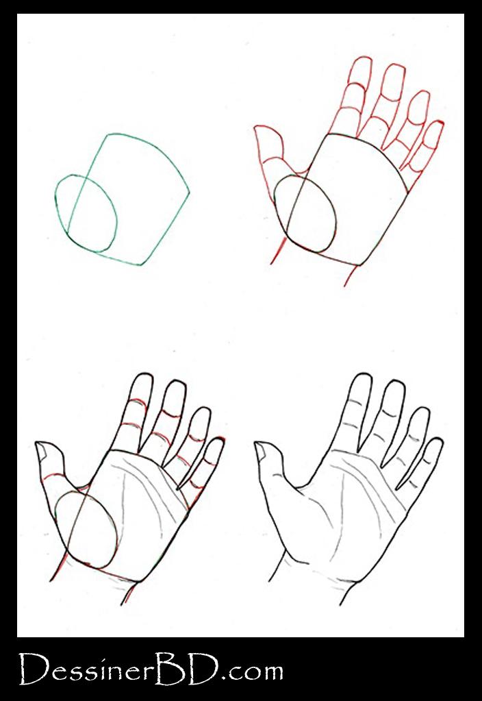 Comment dessiner une main de face