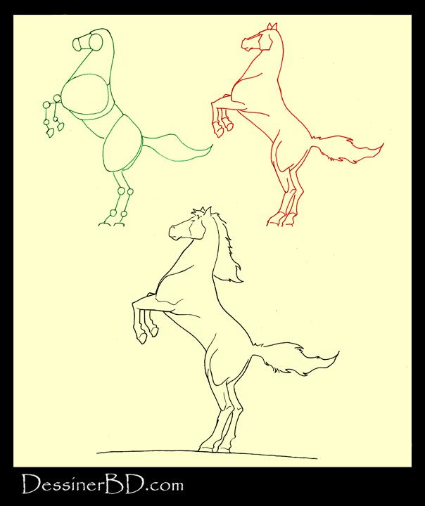apprendre à dessiner un cheval cambré