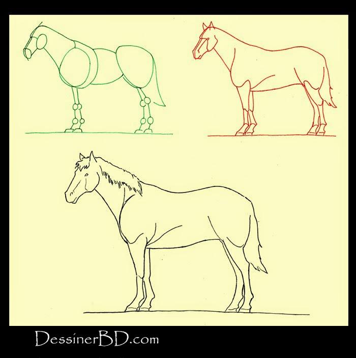 apprendre à dessiner un cheval par étapes
