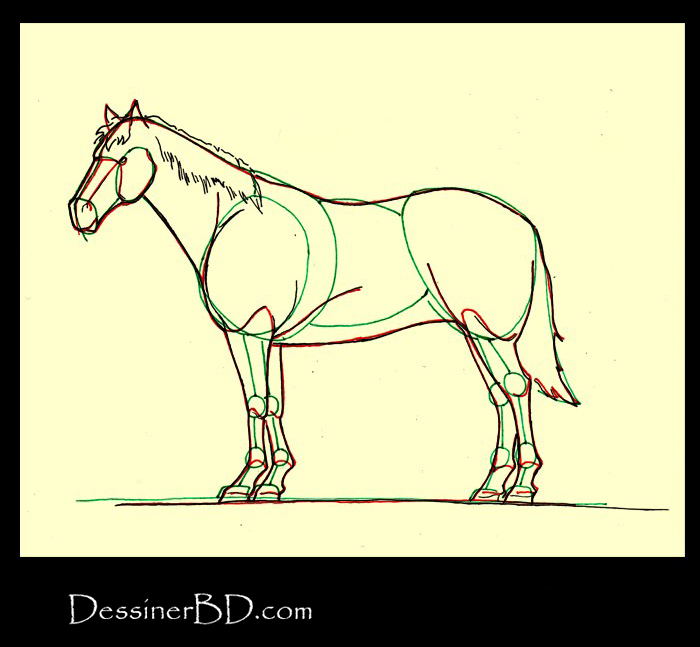 Comment dessiner détails et crin cheval