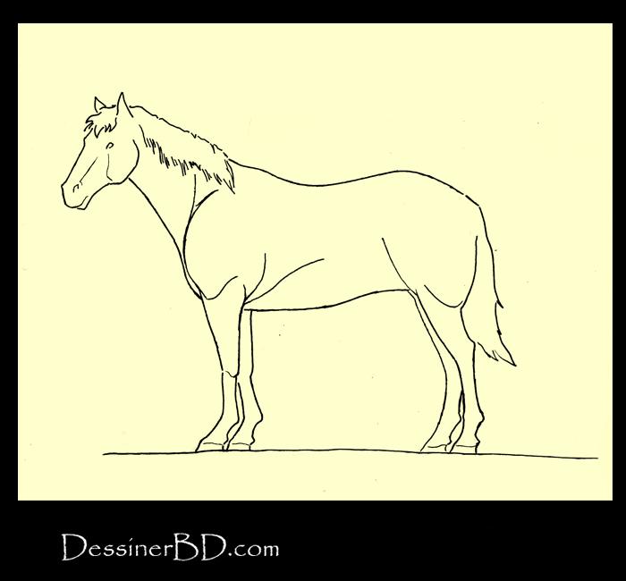 Comment encrer cheval