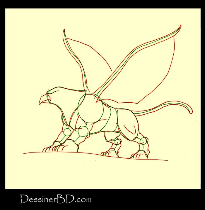comment dessiner anatomie griffon A