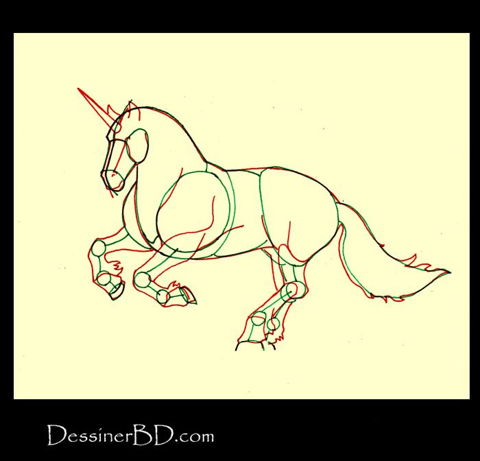comment dessiner morphologie licorne